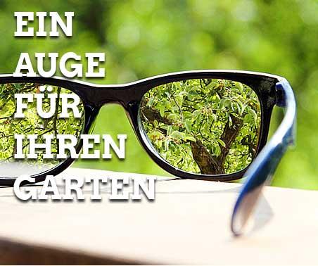Foto eines Gartens, Ansicht durch eine Brille